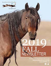 Read the 2019 Fall Newsletter